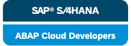 SAP Cloud developer