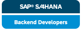 SAP Backend Developer