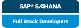 SAP FullStack Developer