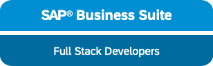 sap business suite erp full stack development abap netweaver